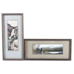 Haynes Falls & Sylvan Lake Framed Photographs