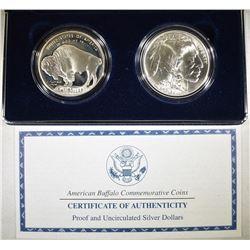 2001 AMERICA BUFFALO 2-COIN SILVER DOLLAR SET