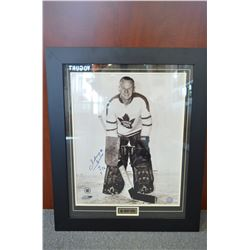 Large - Johnny Bower HOF Signed Photo - Framed!
