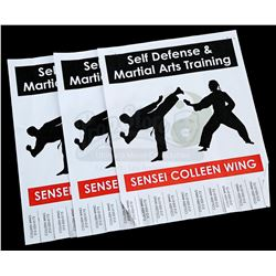 Lot # 669: Set of Three Flyers For Colleen Wing's Dojo