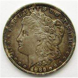 1886 MORGAN DOLLAR BU TONED