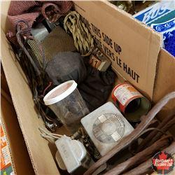 Box Lot: Radio Parts