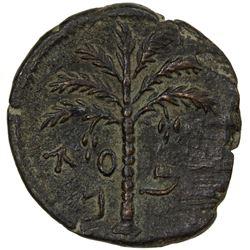 ANCIENT JUDEA: Bar Kochba Revolt, 132-135, AE 25 (8.62g), year 2 (=133/4 AD). VF