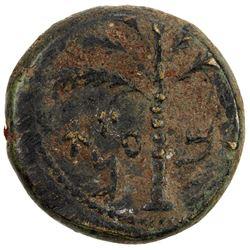 ANCIENT JUDEA: Bar Kochba Revolt, 132-135, AE 23 (14.16g), year 2 (=133/4 AD). F