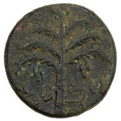 ANCIENT JUDEA: Bar Kochba Revolt, 132-135, AE 23 (10.41g). F
