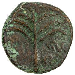 ANCIENT JUDEA: Bar Kochba Revolt, 132-135, AE 25 (11.71g). VG-F