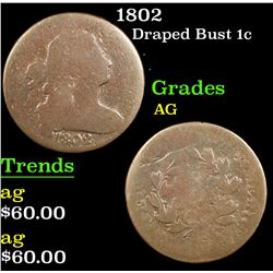 1802 Draped Bust Large Cent 1c Grades ag