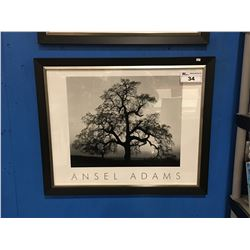 "ANSEL ADAMS AUTHORIZED EDITION FRAMED PRINT - 34"" X 28"""