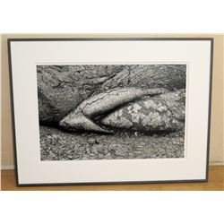 """B&W Franco Salmoiraghi Canon Inkjet Print, Back Signed by Artist, Framed 41"""" x 31"""", Kau Desert Trail"""