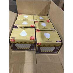 Globe Incandescent 100W Bulbs 6-Pack (6ct)