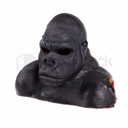 The Flash Gorilla Grood Stand-In Head