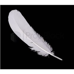 Harry Potter and the Sorcerer's Stone White Quill