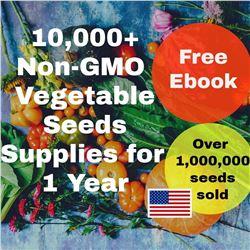 10,000 + Heirloom Seeds Fruit and Vegetation Package