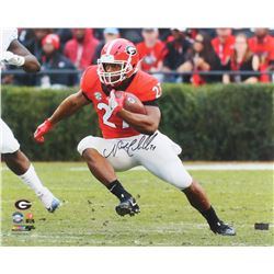 Nick Chubb Signed Georgia Bulldogs 16x20 Photo (Radtke COA)