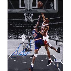 Scottie Pippen Signed Chicago Bulls 8x10 Photo (Beckett COA)