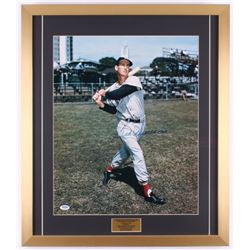 Ted Williams Signed Boston Red Sox 22x25.5 Custom Framed Photo Display (PSA LOA)