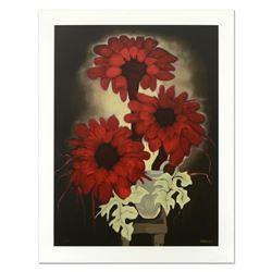 Daisy Red by Barnum, Brenda