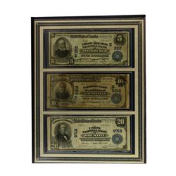 The Last Large-Size U.S. National Bank Notes in Book
