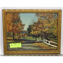 FALL TREES FRAMED PICTURE