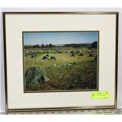 FRAMED HARVEST PICTURE