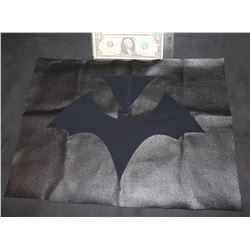 BAT WOMAN CHEST GLYPH AND MATERIAL TEST PANEL 1