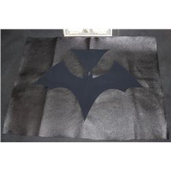 BAT WOMAN CHEST GLYPH AND MATERIAL TEST PANEL 2