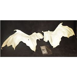 DRAGON MAQUETTE SIZE WING CASTINGS