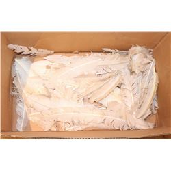 MICHAEL BOX OF SCREEN USED FEATHERS FROM WINGS JOHN TRAVOLTA
