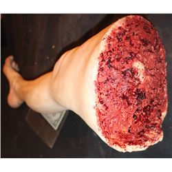SILICONE SEVERED LEG WITH NICE GORE AT STUMP