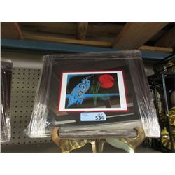 "Richard Shorty Framed Print ""Night Heron"""
