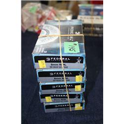 5 Boxes  (100) Ammo