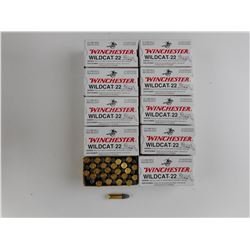 WINCHESTER WILDCAT 22 LONG RIFLE AMMO