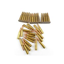 308 WIN ASSORTED AMMO, SOME ON STRIPPER