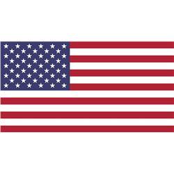USA BIDDER PLEASE READ