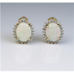 19CAI-21 OPAL & DIAMOND EARRINGS