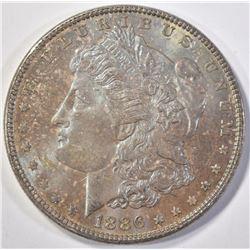 1886 MORGAN DOLLAR   UNC  TONED