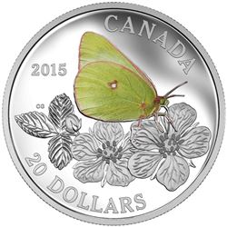 Butterflies of Canada .9999 Fine Silver $20.00 Coin 'Colias, Gigatea' with 3D Box