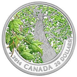 2014 .999 Fine Silver $20.00 Coin 'Maple Canopy, Spring Splendour' LE/C.O.A.