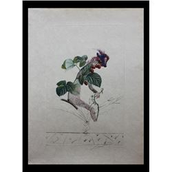 """Salvador Dali- Photolithograph with original engraving and embossing """"Raspberry"""""""
