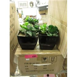 Case of 6 New Artificial Cactus