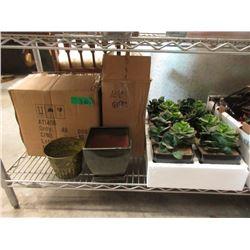 Artificial Plants, Glazed Plant Pots & More