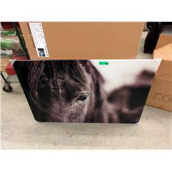 "New Large Acrylic Wall Art - 37"" x 41"""