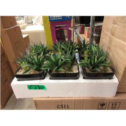 """3 Cases of 6 New 5"""" Artificial Plants"""