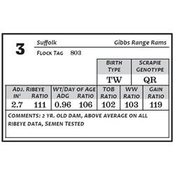 Lot 3 - Suffolk