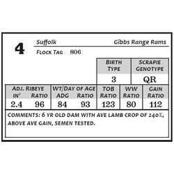Lot 4 - Suffolk
