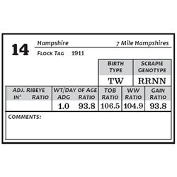 Lot 14 - Hampshire