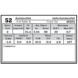 Lot 52 - Rambouillet