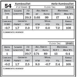 Lot 54 - Rambouillet