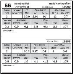 Lot 55 - Rambouillet