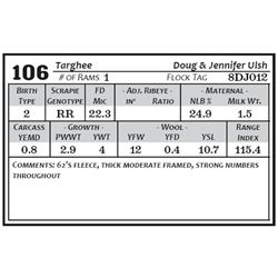 Lot 106 - Targhee